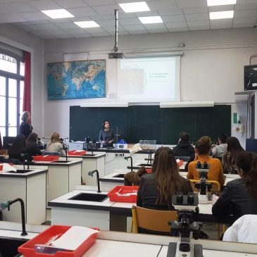 "Laboratory and practical class: ""discover Cnidaria"" at the Lycée Massena (Nice , France)"