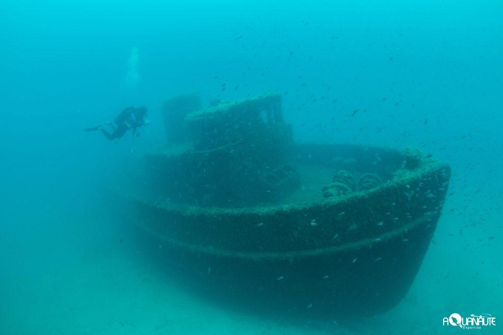 Recensement visuel des peuplements de poissons sur l'épave du Toulonnais située à environ -27m de profondeur
